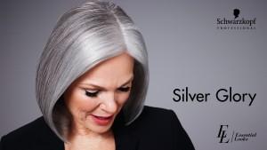 Trendfotos Schwarzkopf Professional, Silver Glory