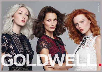Trends 2019 Produkte der Marke Goldwell - Stadtfriseur-Strondl